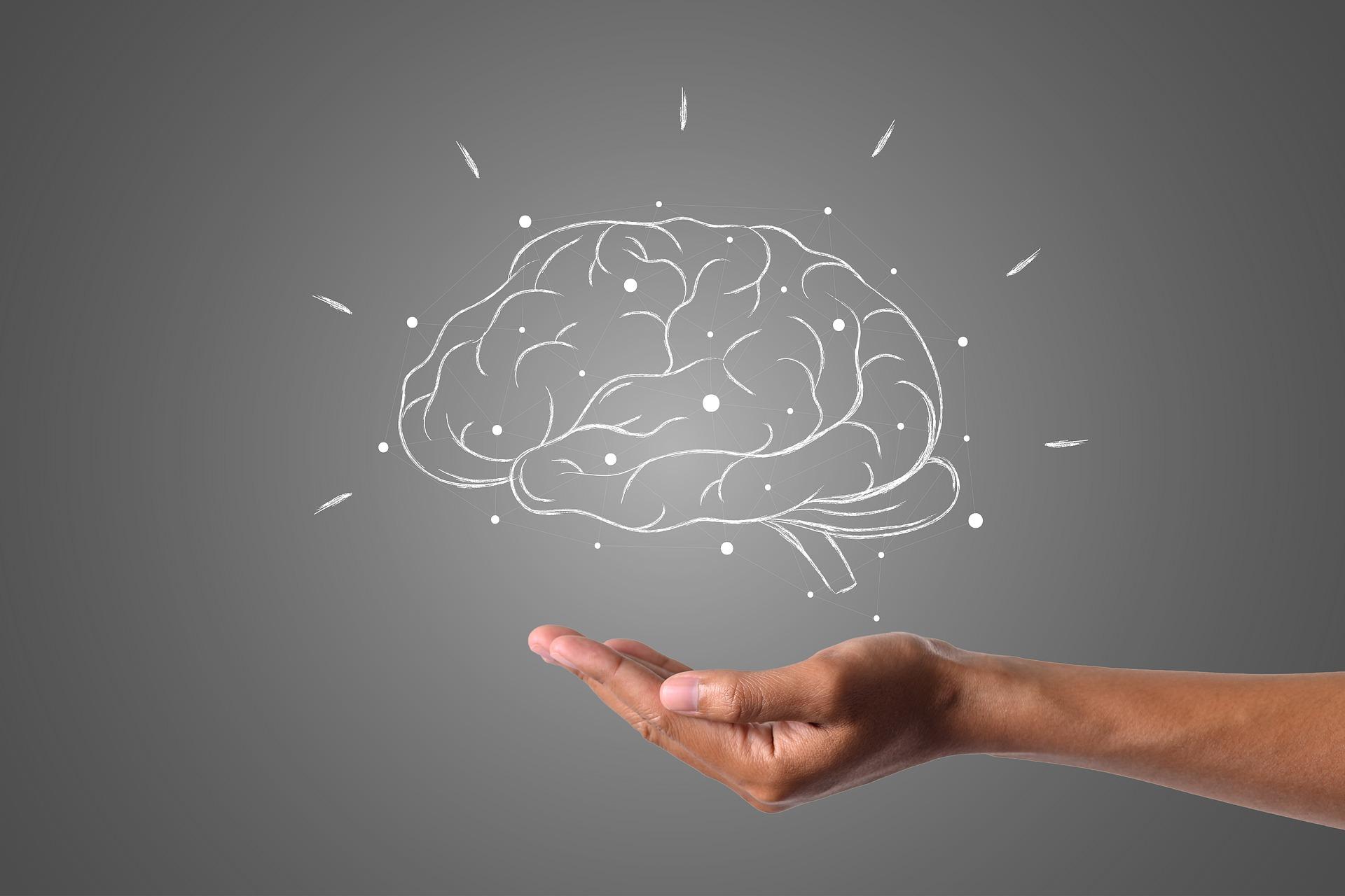 Brain 4961452 1920