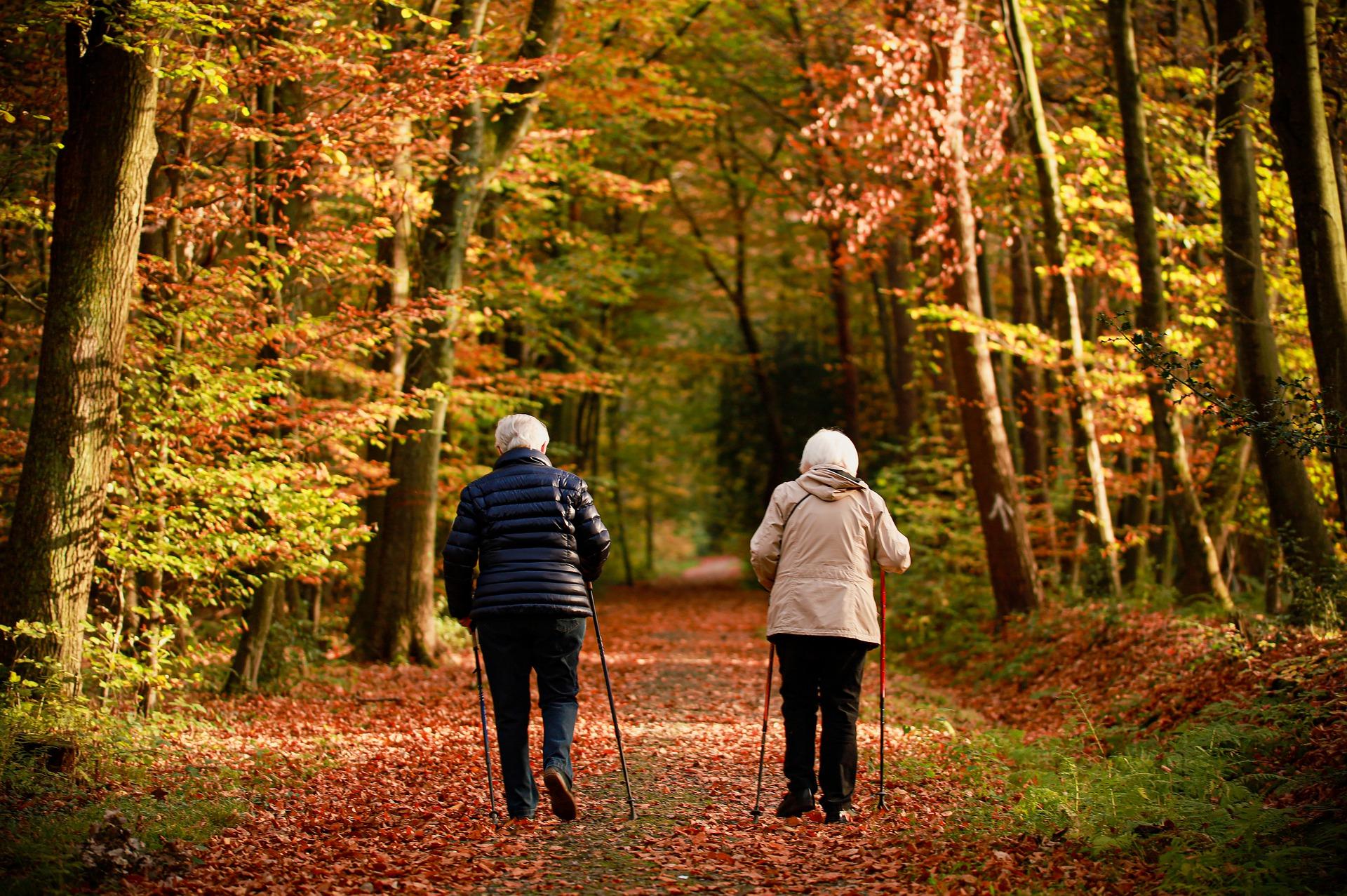 El Senado Estudia El Proceso De Envejecimiento En España